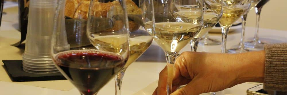 Cellar tour wine tasting