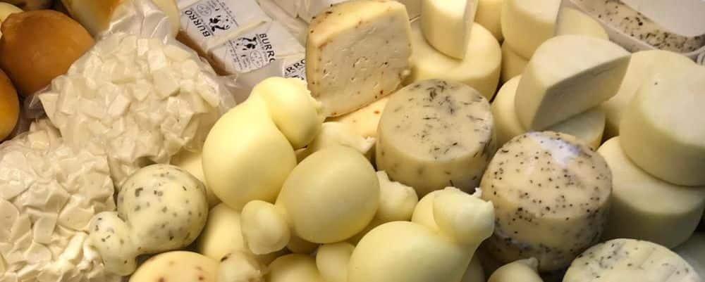 Laiterie en Vénétie, dégustation de vins et de gastronomie