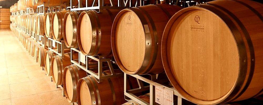 Fûts de chêne français, région de Valpolicella, dégustation de vins au nord de Vérone